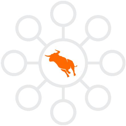 1124-Topics-wheel w bull