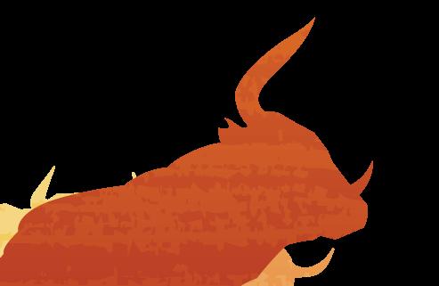 bulls-login